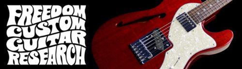 フリーダム ギター