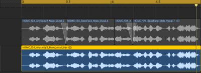 サンプルのカスタム&ループ化をしておくと作曲スピードが上がるよという話